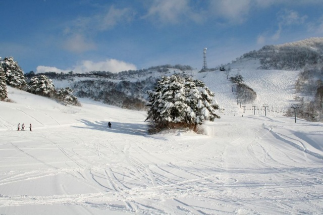 わかぶな高原スキー場1